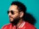 Sänger Adel Tawil steht vor einer Wand und hat eine Sonnenbrille auf