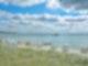 Vor eine Seebrücke stehen Strandkörbe an einem weißen Sandstrand und dem Meer, das glatt und ruhig daliegt.