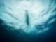 Ein Mann schwimmt in Untersicht im offenen Wasser